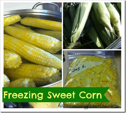 Freezing-Sweet-Corn_thumb.png
