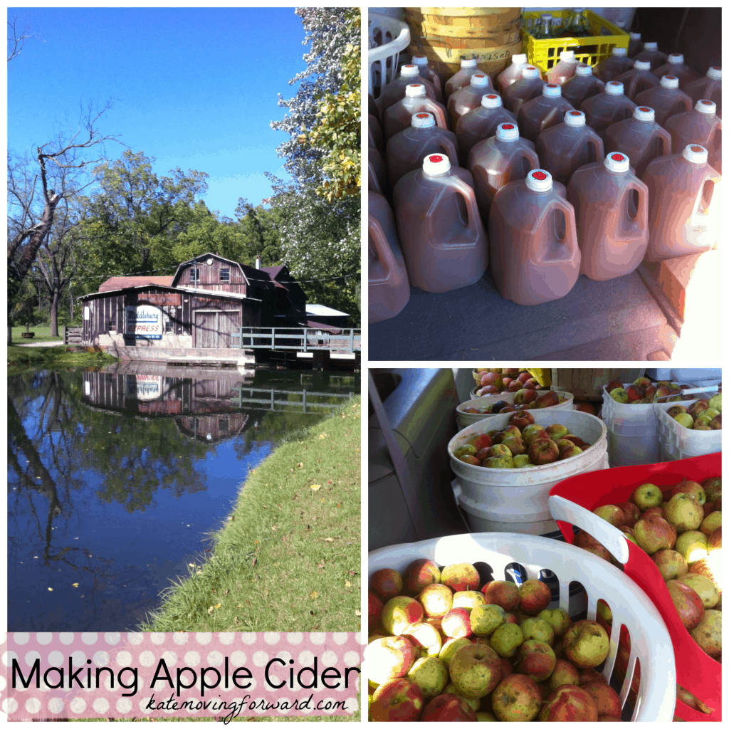 Making Apple Cider--a fun and fresh fall