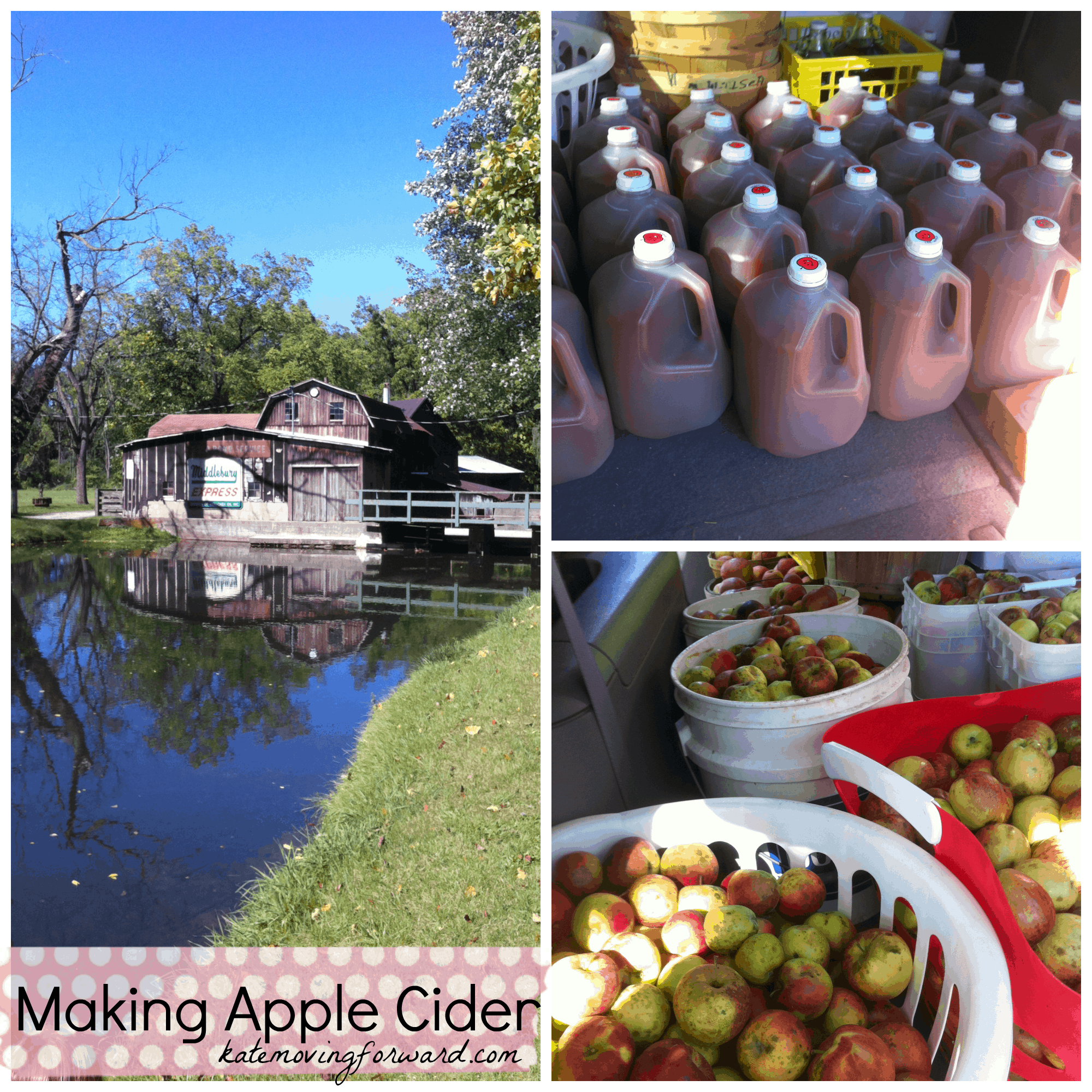 Making Apple Cider--a fun family activity in the fall