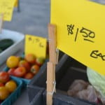 Richland Farmer's Market