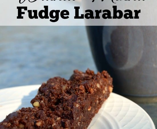 Homemade Walnut Mocha Fudge Larabars
