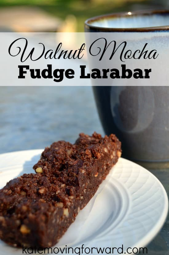 Walnut Mocha Fudge Larabar