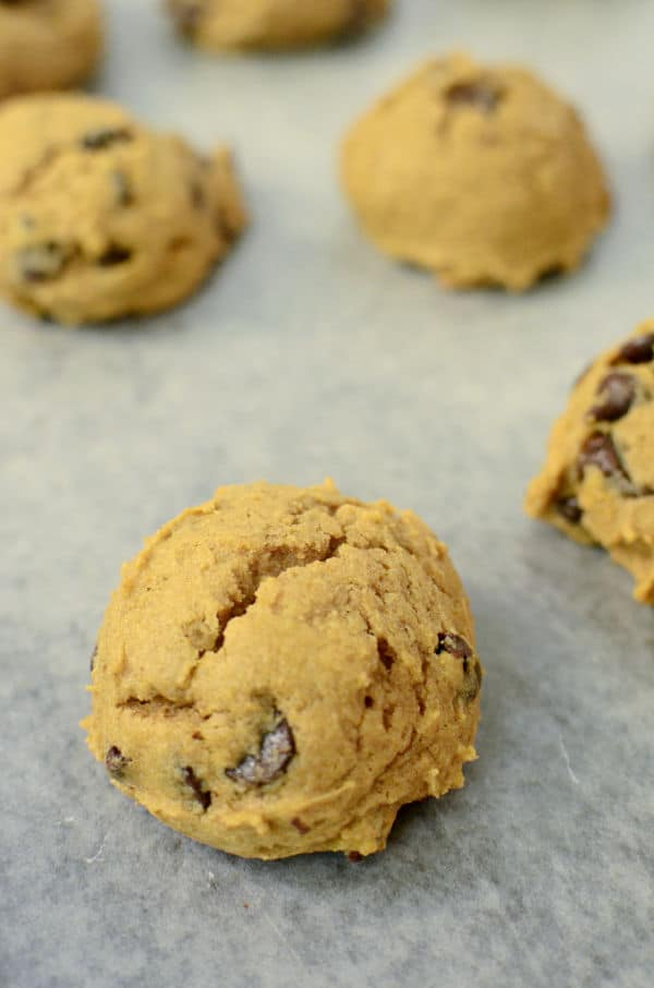 Pumpkin Fall Cookies