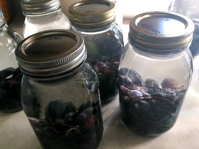 grapes-in-jars