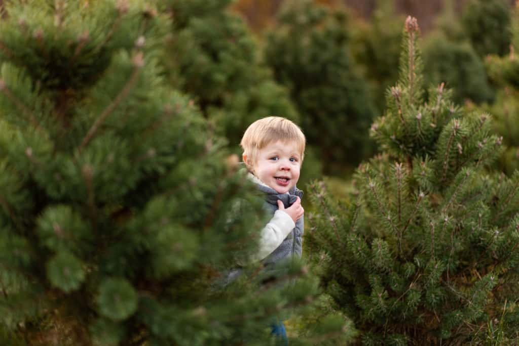 Little boy running in pine trees