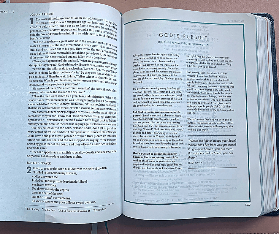 Bible devotions in the She reads truth Bible